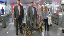 Metro de Madrid permitir� el acceso a los perros en toda la red sin las restricciones actuales