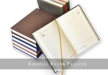 Bayón Pellicer, división de agendas personalizadas