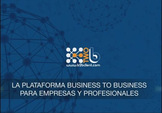 B2B CLIENT para empresas y profesionales, la red business to business