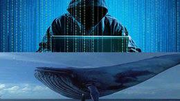 El juego de 'La ballena azul': una peligrosa moda entre jóvenes que acaba en suicidio