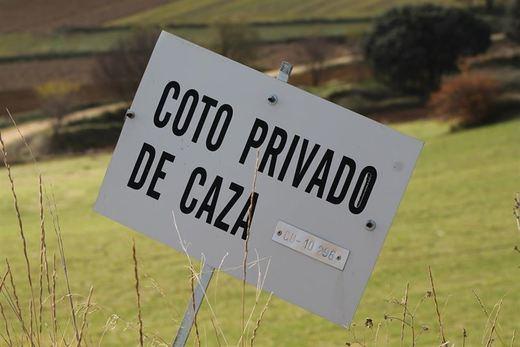 Agricultura cree que el borrador de la Ley de Caza de Castilla-La Mancha estará listo en febrero