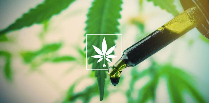Eliquids CBD: la última sensación del cannabis medicinal