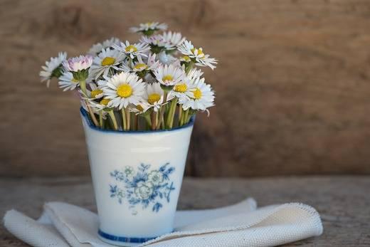 Las flores que hablan de ti