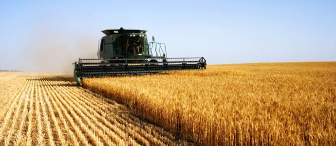 El BEI y Bankia financiarán con 100 millones a pymes del sector agrario y agroalimentario