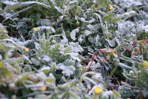 ¡Que viene el frío! Brusca bajada de temperaturas de hasta 10 grados