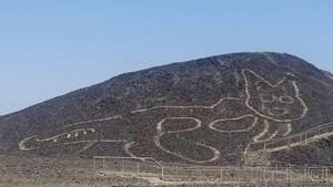 Descubren un nuevo geoglifo en las Líneas de Nazca en Perú: un gato gigante