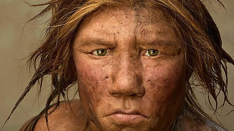 Neandertales y homo sapiens se unieron hace más de 100.000 años compartiendo genes