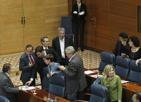 Se elevan a cinco los socialistas expulsados del pleno de la Asamblea por llamar