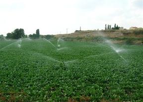 Los agricultores de La Sagra-Torrijos se manifestarán para denunciar la