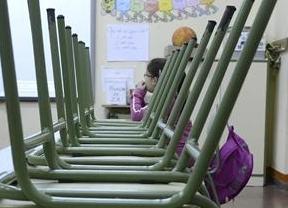 El 28 de noviembre se celebran elecciones a los consejos escolares