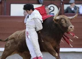 Manoletinas de Juan del Álamo al toro al que cortó una oreja
