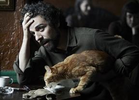 Los hermanos Coen nos traen a Ulises, el gato cinematográfico de moda y con cuenta en Twitter