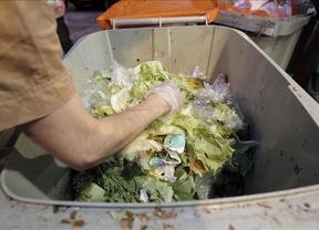 El 41,3% de los consumidores tira a la basura menos alimentos por la crisis