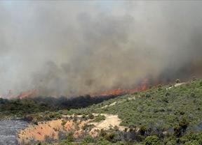 El incendio de Aleas se reactiva y entra en el Parque Natural de la Sierra Norte de Guadalajara