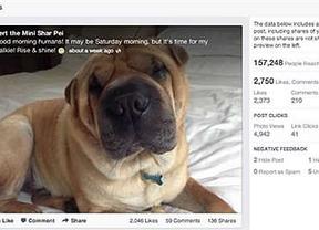¿Una imagen vale más de mil palabras? En Facebook sí con los 'fotocomentarios'