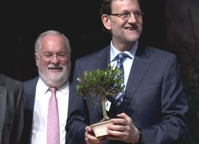 Decepcionante arranque de la campaña 'oficial': Ni Rajoy ni Valenciano calientan el ambiente