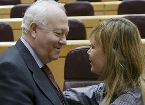 Pajín y Moratinos se unen a la iniciativa 'Mucho PSOE por hacer'