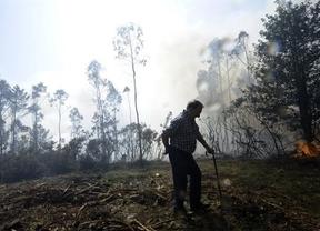 El perímetro del incendio de Coruña ya está controlado