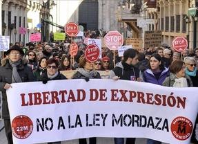 Todos contra el PP también en la 'ley mordaza': recurso de la oposición excepto CiU ante el Constitucional