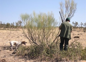 Ecologistas en Acción califica la licencia de caza interautonómica como 'un riesgo' para el medio natural