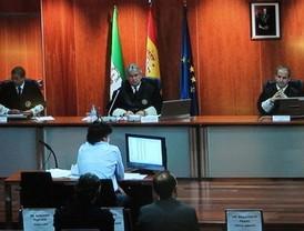 El juicio a la presunta trama de corrupción de Marbella cumple un año con 94 sesiones celebradas