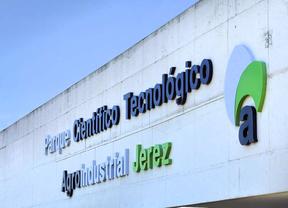 La iniciativa 'Emprendedores 2020' llega a Jerez el viernes 19 a ritmo de bulerías