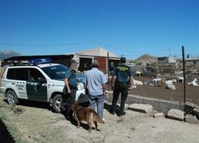 El PSOE denuncia que aumentan los robos en el campo: La Guardia Civil