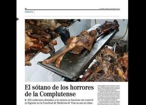 La inspección de trabajo clausura el crematorio de la Complutense