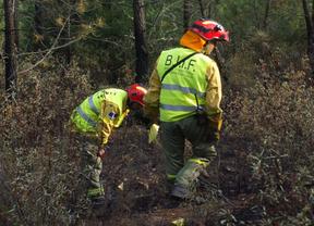El 33% de los incendios de la pasada campaña fueron intencionados
