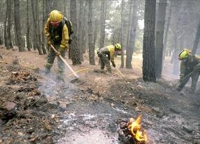 IU: Agricultura está comunicando despidos a trabajadores antiincendios mientras trabajan contra el fuego