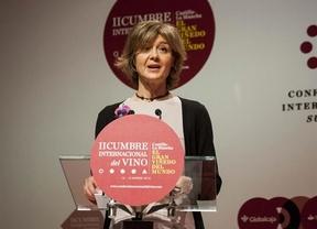 Tejerina: La Cumbre Internacional del Vino generará 'más valor añadido'