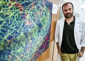 Parapléjicos celebra sus 12 años de vida con una exposición del sistema nervioso