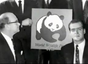 WWF España ya no quiere que el Rey sea su presidente honorífico