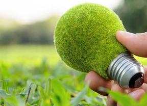 Eco-innovación con materiales reciclados, una oportunidad para emprender en verde