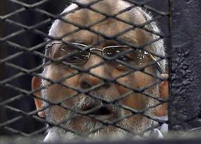 Las autoridades egipcias declaran