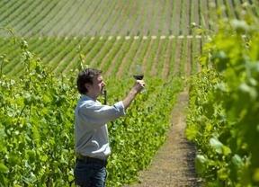 La Rioja hace una apuesta ganadora: el turismo rural vinculado al vino