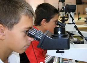 El único proyecto español en su categoría gana la 'Google Science Fair'