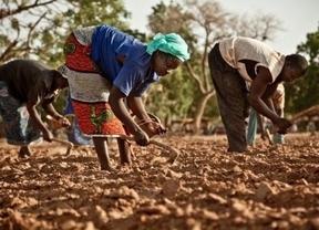Intermón CLM alerta sobre la emergencia alimentaria en los países del Sahel