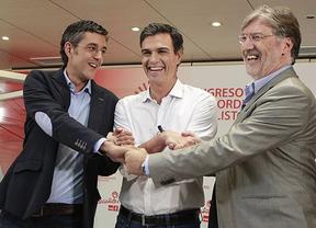 Más de 11.600 militantes de Castilla-La Mancha podrán votar al nuevo secretario del PSOE