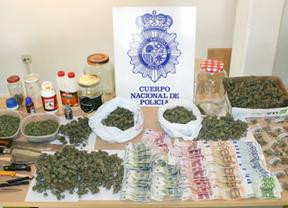 Dos detenidos en Albacete por cultivo y tráfico de drogas