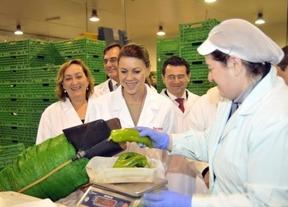 Cospedal anuncia 45 millones para ayudar a modernizar industrias y cooperativas agroalimentarias