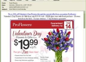 Cómo evitar las ciberestafas en San Valentín