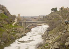 'Salvemos el Tajo', este sábado en Toledo, organizado por el Partido Castellano