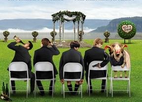 'Una boda de muerte': Resacón en Australia