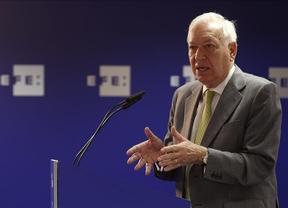 Margallo hace un llamamiento al sentido común para lograr el entendimiento entre España y Venezuela