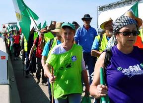 Las Marchas de la Dignidad vuelven a actuar: rodean los parlamentos autonómicos de toda España