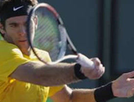 Juan Martín Del Potro busca regresar a la cima del tenis mundial