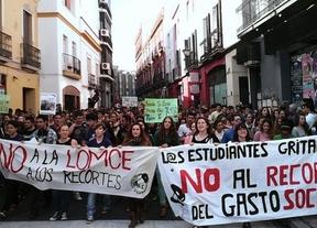 Manifestaciones educativas: miles de estudiantes protestan contra la LOMCE en toda España