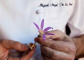 Gastronomía y botánica se dan la mano gracias a Miguel Ángel de la Cruz