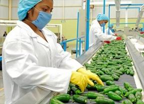 El 39% de las empresas en España está realizando contrataciones